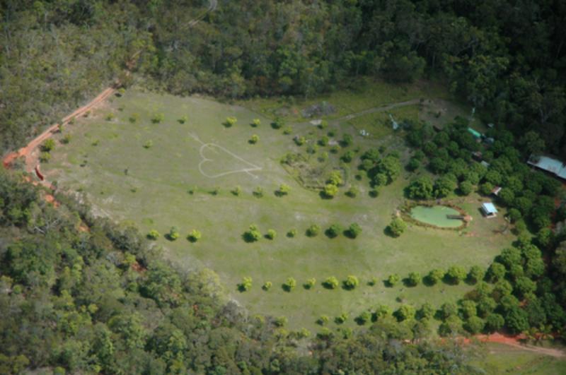 Top view - Cedar Park Rainforest Resort