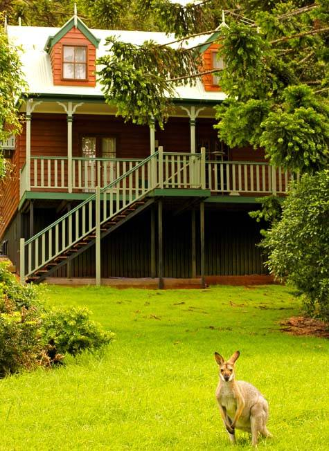 Sweet Inspirations - Bunya Mountains Accommodation Centre