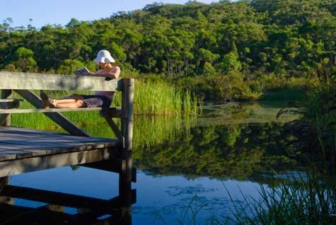 Kingfisher Bay Resort - Kingfisher Bay Resort