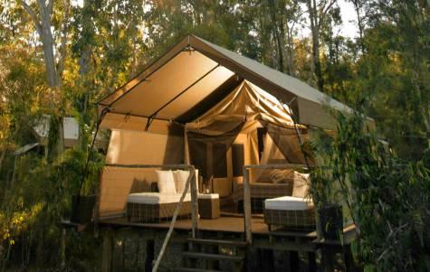Deluxe Tent - Paperbark Camp