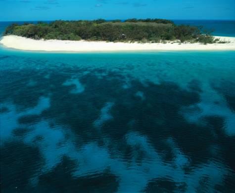 Wilson Island - Wilson Island Resort