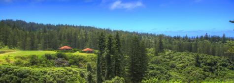 National Park Views - Whispering Pines Cottages